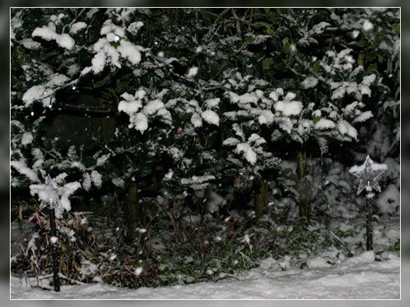 schneegestoeber_02.jpg