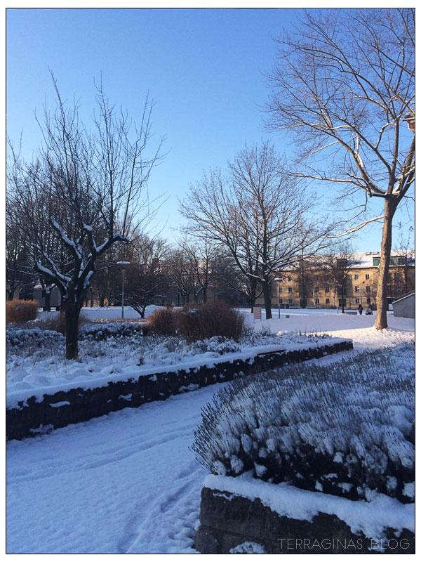 schnee_campus